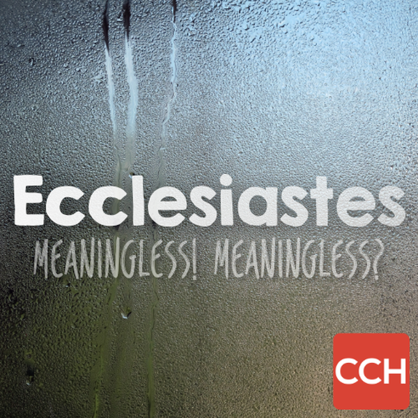 Ecclesiastes: Meaningless! Meaningless?